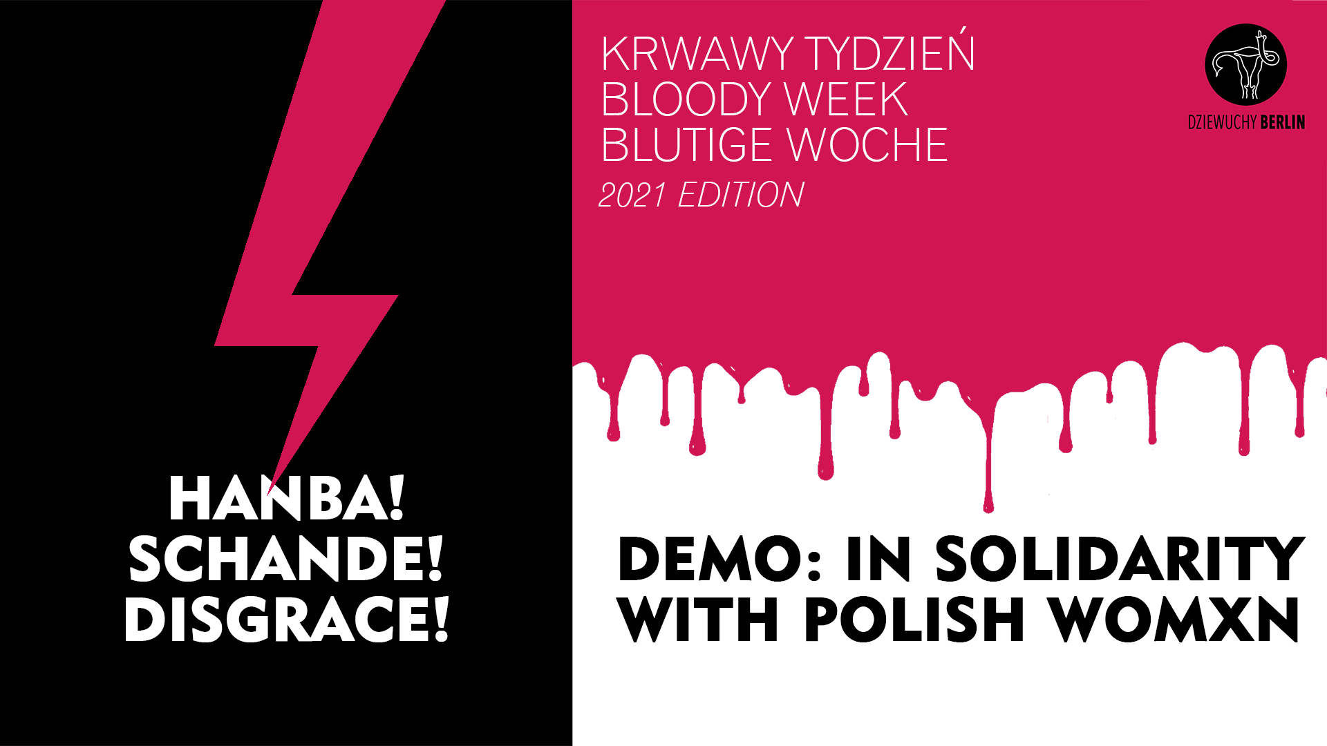 31.1.2021 Hańba! Schande! Disgrace! Soli demo with Polish women